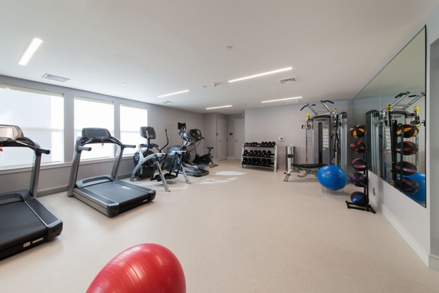 linea cambridge fitness area
