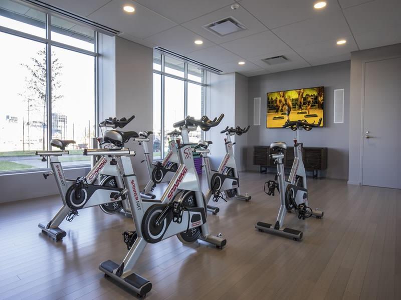 Zinc gym