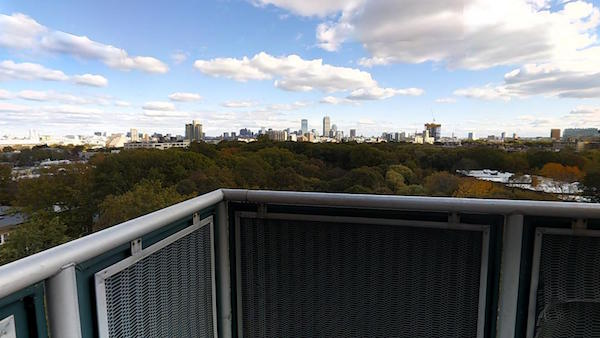 Dexter Park balcony