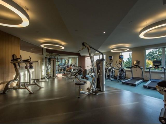 lumiere gym