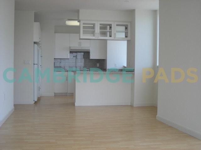 100 Landsdowne Modern Apartment