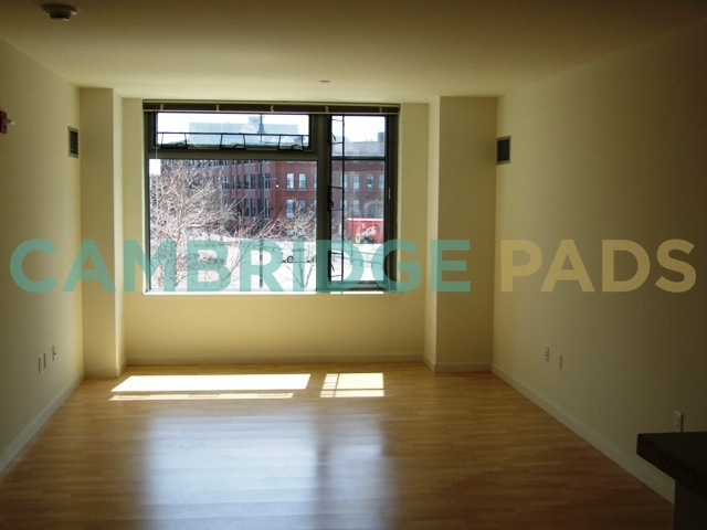 100 Landsdowne Living Room