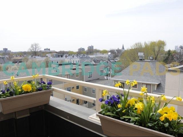 Auburn Court view