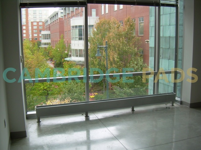 University Park windows